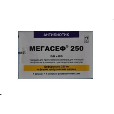 Megasef 250 mg 1's powder for injection / m